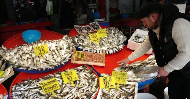 Bardırma'da Palamut ve çinekop balığı rekor kırdı