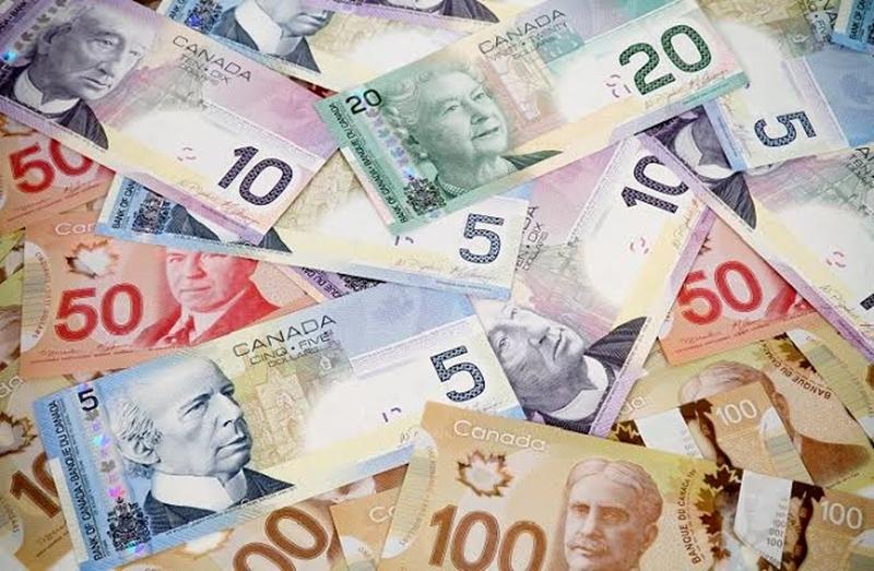 61 Kanada Doları Ne Kadar